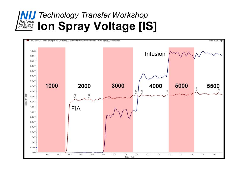 Ion Spray Voltage [IS] 1000 3000 5000 Infusion 2000 4000 5500 FIA